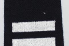 Tasmania Epaulet