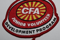 CFA Junior Volunteer Development Program